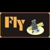 Fly Models